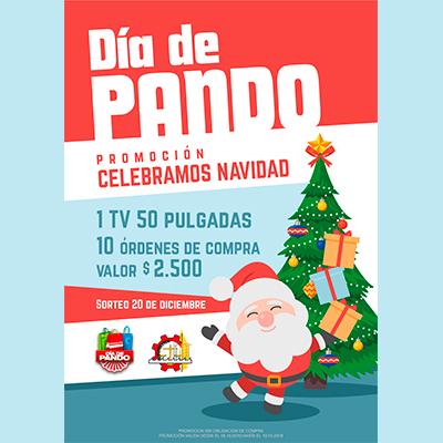 Promoción Celebremos Navidad - CCIAP